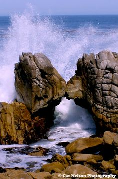 Arched Rocks in Monterey Bay, CA