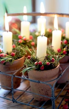 Cluster small flower pots together, add a candle + you have a gorgeous centerpiece for winter.