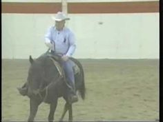 TEACH YOUR HORSE TO NECK REIN - really good demonstration! Plus link to other videos for training