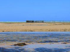 Foto:Canon SX520hs  #fotografia #retrato #foto #photo #photography #praia #verao #summer #beach #mobilephotography #maceio #alagoas #sonhoverde #details #canon #canonsx520hs #lover #sorriso #smile #vsco #vscobrasil