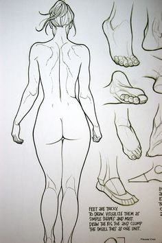 Feet are Tricky. To Draw. The Art of Frank Cho ~from Drawing Beautiful Women: The Frank Cho Method: Flesk: The hips are a helpful reference too Female Drawing, Body Drawing, Anatomy Drawing, Drawing Women, Human Anatomy, Female Anatomy Model, Feet Drawing, Female Torso, Figure Drawing Reference