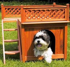 Room with a View Dog House - The Room with a View Dog House is designed for the smaller animals in your home and while more compact does not sacrifice comfort or style for space.The cedar construction and raised base architecture allows you the freedom to keep this house indoors or outdoors while keeping your pet warm and dry. As a bonus this dog house has steps along one side which lead to a wonderful roof-top balcony allowing your pet the freedom to enjoy the weather of the warmer months…