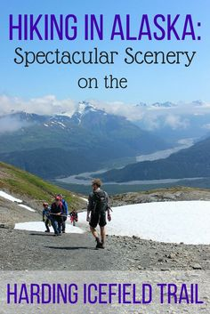 One of my favorite hikes that I did during my three weeks in Alaska was the hike from Exit Glacier up to the vast and gigantic Harding Icefield. The hike gains altitude steadily and offers alpine scenery, incredible views, colorful wildflowers, waterfalls