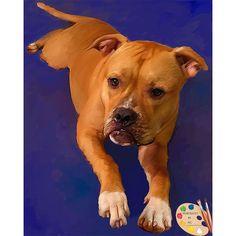 Boxer Pet Portrait 393