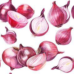 onion pattern on Behance Vegetable Drawing, Vegetable Painting, Botanical Art, Botanical Illustration, Watercolor Illustration, Watercolor Fruit, Watercolor Paintings, Onion Drawing, Fruits Drawing