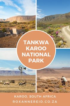 Relax in the Tankwa Karoo National Park, South Africa - Roxanne Reid Kruger National Park, National Parks, All About Africa, Okavango Delta, Slow Travel, African Safari, Africa Travel, Virtual Tour, South Africa