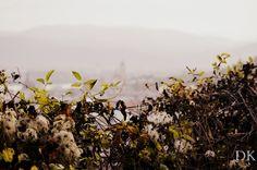 Autumn in Krems an der Donau