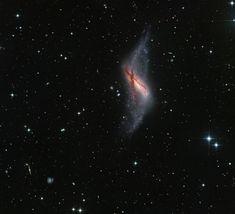 Polar Ring Galaxy NGC 660 Image Credit &Copyright:CHART32 Team,Processing -Johannes Schedler