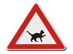 Dreieckiges Verkehrsschild mit Motiv - Katze -