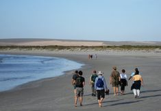 Five Bay Trail in Paternoster, Western Cape. 28 kilometres in 2 and a half days: One of five trails developed in the West Coast Biosphere Reserve, . Beach Walk, West Coast, Westerns, Cape, Trail, Walking, In This Moment, Magic, Outdoor