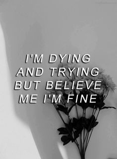 But I'm Lying.. I'm so very far from fine