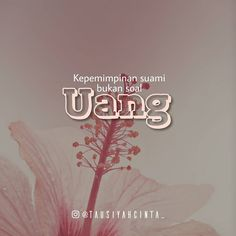 37 Best Rumah Tangga Quote Images Ribbons Quotes Indonesia