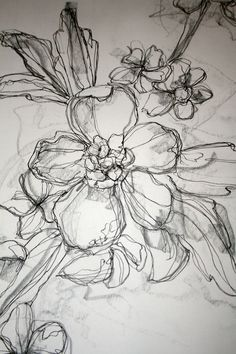 Floral illustration with pen/pencil for logo floral drawing, flower pencil drawings, poppy Ink Drawings, Drawing Sketches, Cool Drawings, Drawing Ideas, Contour Drawings, Sketching, Floral Illustrations, Art And Illustration, Pattern Illustration