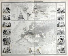 Geographical distribution of birds around the world and Europe | 1849
