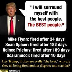 President Cockroach