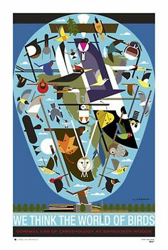 Framed and ready for our spare room.  I love Charley Harper!