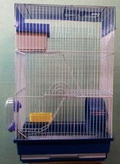 Hamstera 3 pisos