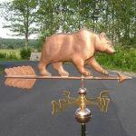 Copper Bear 104