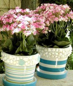 pretty coastal flower pots