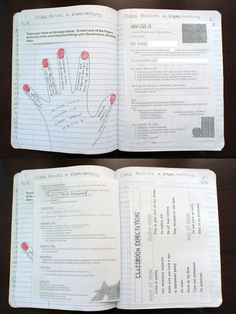 Ideas and Examples for setting up an interactive notebook