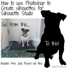 A step by step tutorial that breaks down how to go from an image to a silhouette that you can import into Studio.