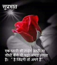 Good Morning Quotes In Hindi Good Morning Morning Quotes Good