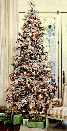 Christmas Tree Image http://picturingimages.com/christmas-tree-image-17/