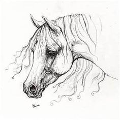 Arabian Horse Tattoos Image Tattoo