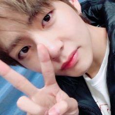 Seokjin, Hoseok, Namjoon, Jeon Jeongguk, K Pop, Bird App, Bts Maknae Line, Wattpad, Army Love