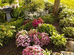 My flowerbed