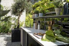 Backyard, Patio, Outdoor Furniture Sets, Outdoor Decor, Back Gardens, Bungalow, Pergola, Villa, Plants