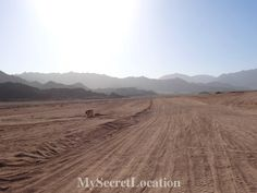 Sinai desert. For more pictures visit www.mysecretlocation.net  #sinai #desert #egypt #sharmelsheikh #safari #amazing #beautiful #blogger #destination #instantravel #tbt #trip  #sunny #travel #travelblog #mysecretlocation #advanture #desert