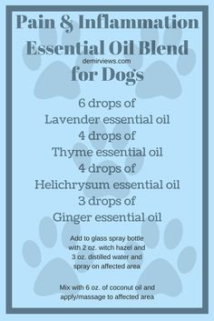 Does your dog have in injury or in pain? Mix up this Essential oil blend and give your dog a massage demirviews.com