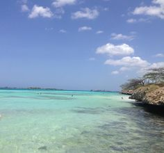 Mangel Halto Beach in Aruba is perfect for snorkeling!