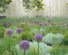 Contemporain Jardin by WA design