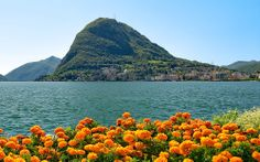 #Spring in #Lugano: we are all thirsty for light, go for walks, fill the street cafés of the city and enjoy the first warm rays of #sunshine. #luganoinblog