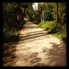 The Illinois Prairie Path ~ A Fabulous Trail in the Western Suburbs of Chicago