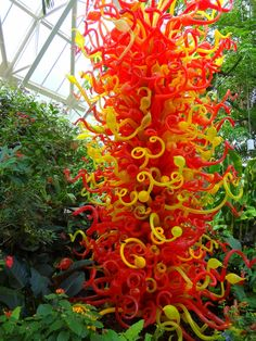 Chihuli Sculpture in the butterfly gardens of Franklin Park Conservatory in Columbus Ohio