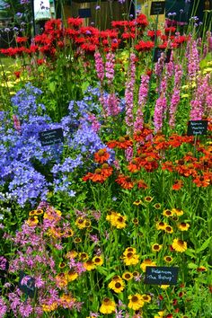 Cut Flower Garden, Beautiful Flowers Garden, Beautiful Gardens, English Garden Design, Cottage Garden Design, Home And Garden Store, English Country Gardens, Colorful Garden, Parcs