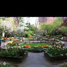 Columbus Community Garden