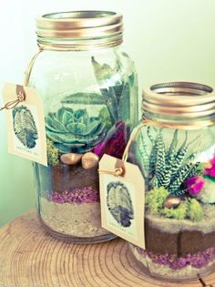 Organic Mason Jar Terrarium | 60 Cute and Easy DIY Gifts in a Jar | Christmas Gift Ideas