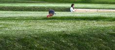 informal play landscape