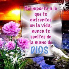 No importa a lo que te enfrentes en la vida, nunca te sueltes de la mano de Dios