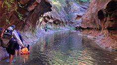 Best Sedona Day Hikes | Where to Hike in Sedona | Best for Shade, Sunsets or Wildlife - Sedona.net