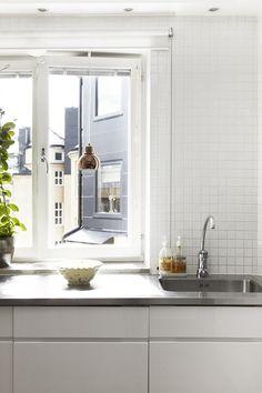Fönster kök växt