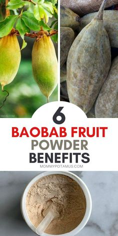 Healthy Foods To Eat, Healthy Tips, Healthy Eating, Baobab Benefits, Baobab Tree, Medicinal Herbs, Balanced Diet, Natural Cures, Herbal Remedies