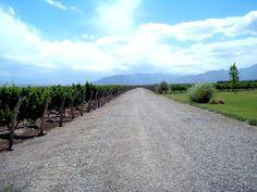 Mendonza - Argentina