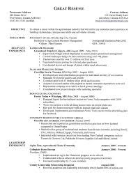 Sample Social Work Resume Examples  Resume Templates
