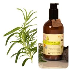 White Willow & Arnica Foot & Leg Lotion - Angelica Root Organics Whiskey Bottle, Lotion, Organic, Drinks, Health, Hair, Shoes, Drinking, Beverages