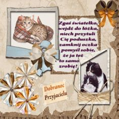 Animowane obrazki i gify na dobranoc: Animowane i gify na dobranoc kotki i pieski Photography, Dog Love, Photograph, Fotografie, Photoshoot, Fotografia